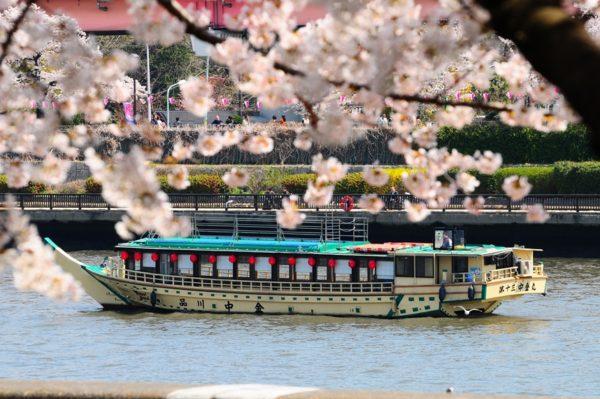 お花見コースの屋形船