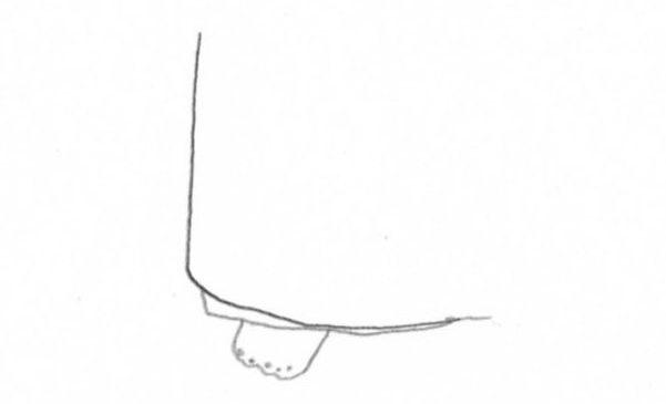 裾除けの上前位置