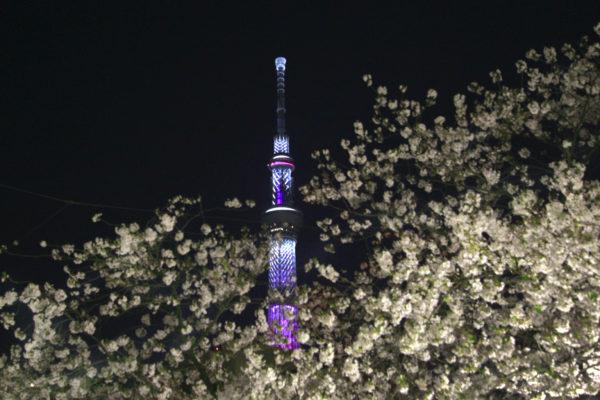 夜のライトアップと東京スカイツリー