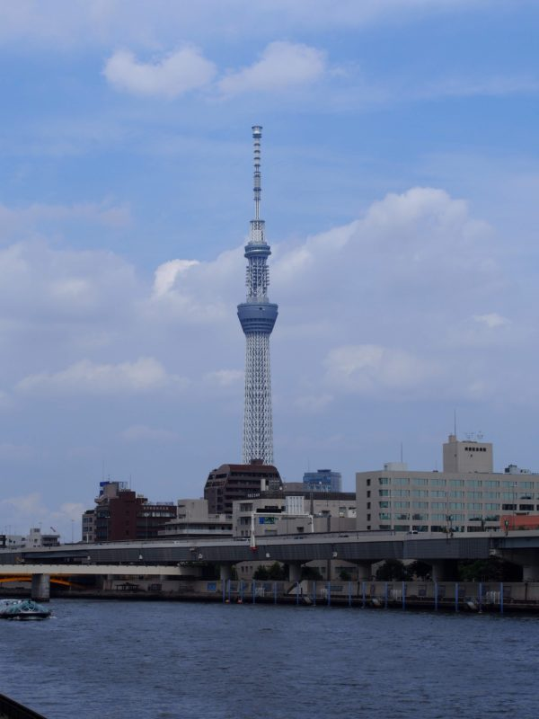 晴れた日の隅田川テラスの散歩は最高!