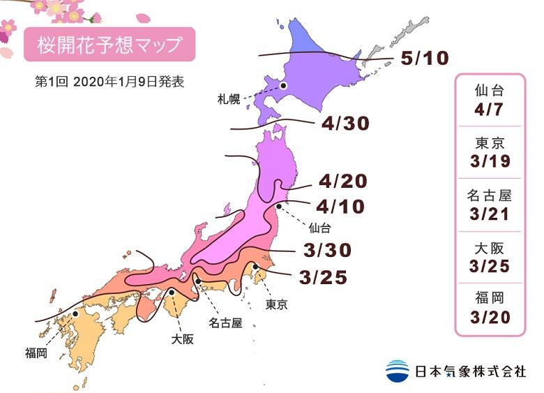 桜開花予測2020